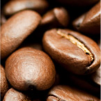 Best Coffee Bean bu Holly Brown